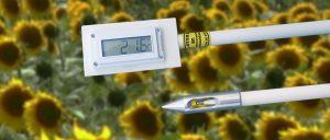 Sonda Temperatura 2 m